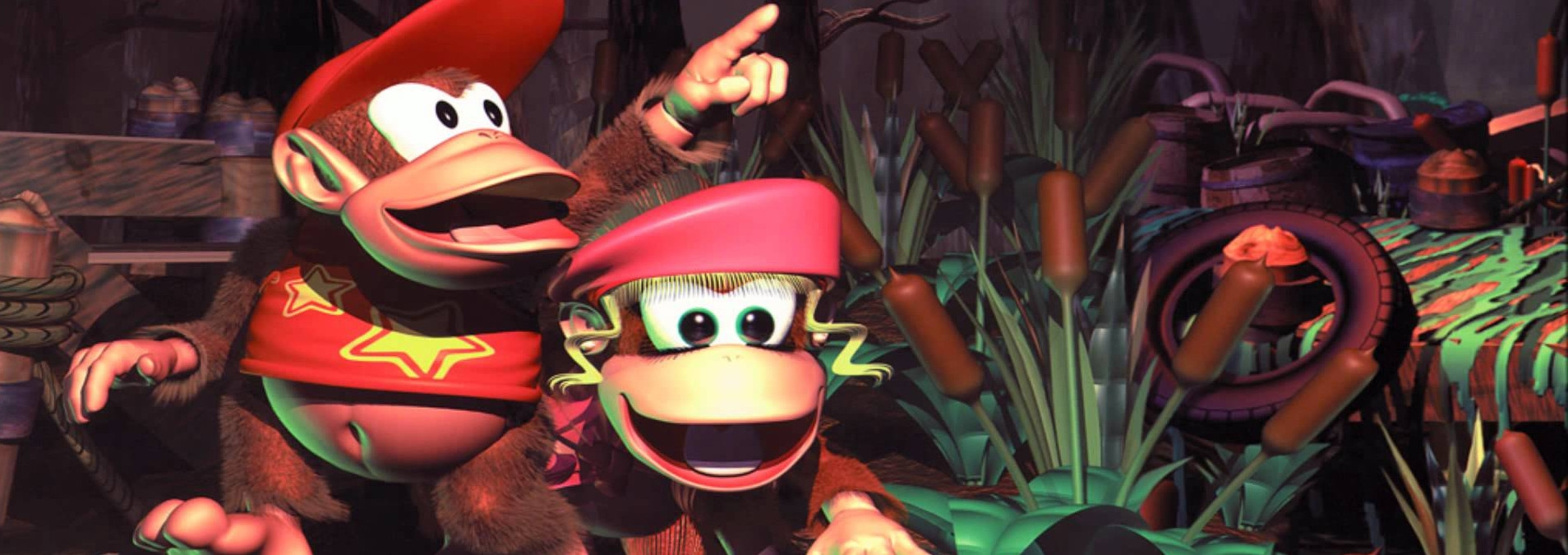Banner Donkey Kong Country 2 Diddys Kong Quest
