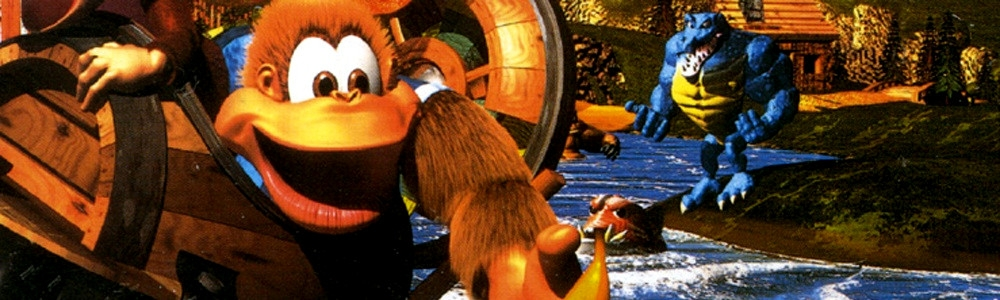 Banner Donkey Kong Country 3 Dixie Kongs Double Trouble
