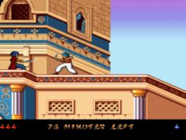 Ook in deze game draait het om zwaard gevechten en het redden van de prinses.